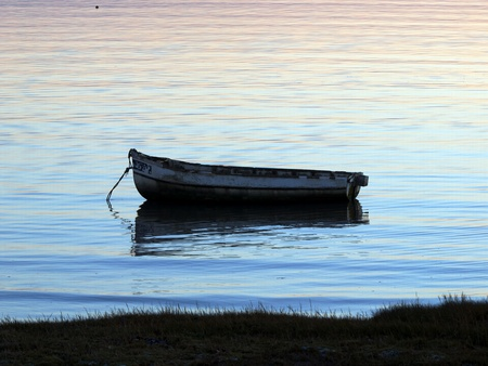tethered: Tethered boat by the shore