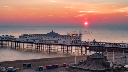 View of a sunset on  Brighton pier with a flock of birds