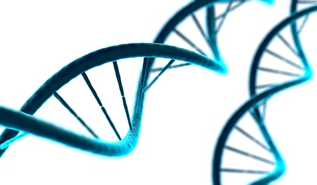3D rendered illustration of DNA molecule on white background. Stock Photo