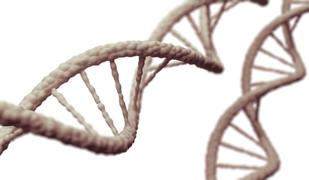 genetically: 3D rendered illustration of DNA molecule isolated on white background. Stock Photo