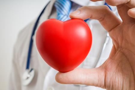 donacion de organos: Cardiologist doctor is showing red heart.
