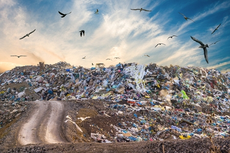 Pollution concept. Garbage pile in trash dump or landfill. Birds flying around. Stok Fotoğraf
