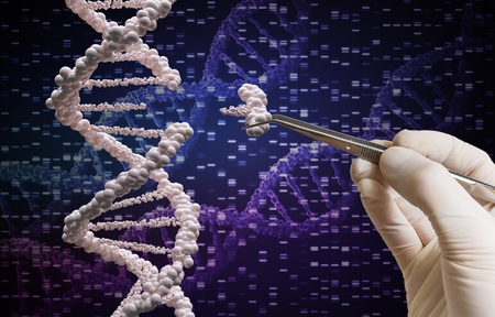 genetic modification: Genetic manipulation and DNA modification concept.