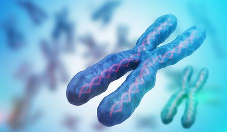 3D rendeu a ilustração dos cromossomas. Conceito de genética.