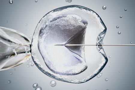 Laboratory microscopic research of IVF (in vitro fertilization). 3D rendered illustration. Stock Photo