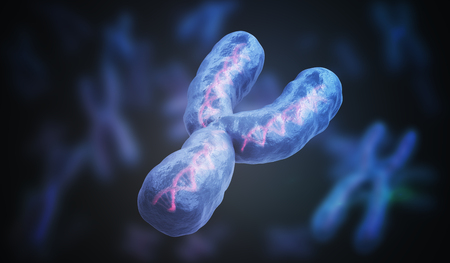 Male gender Y chromosome. Genetics concept. 3D rendered illustration. Stock Photo