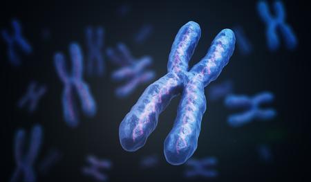 X Chromosomes with DNA molecules. Genetics concept. 3D rendered illustration.