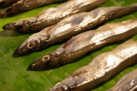deep fried Smelt Fish with Many Eggs, japanese food Stock Photo