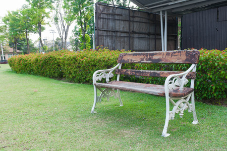 wood bench: old wood bench in garden background