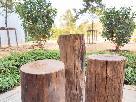 Real Brown Stump Chair Was Decorate In The Garden View Photo