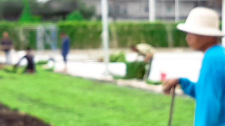 Blur of gardener in process of grass arrangement