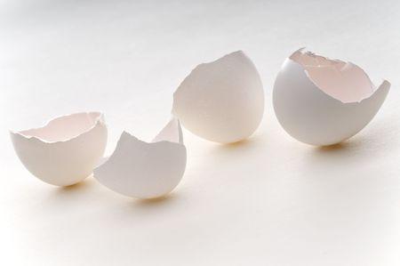 空の卵の殻