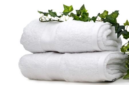 Vite verde su fondo bianco asciugamani Archivio Fotografico - 4010599