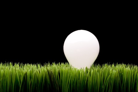 A glowing incandescent bulb on green grass with space for copy on the black background