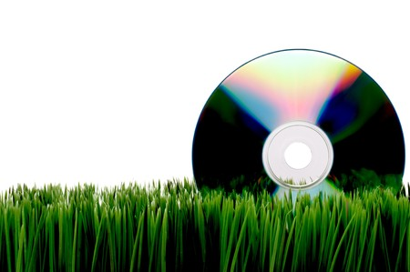 fescue: Compact computer data disk on green grass with a white background Stock Photo