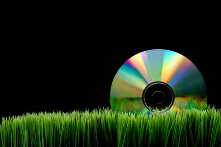 fescue: Compact computer data disk on green grass with a black background