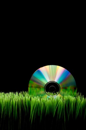 fescue: Compact computer data disk on green grass with a black background and space for copy