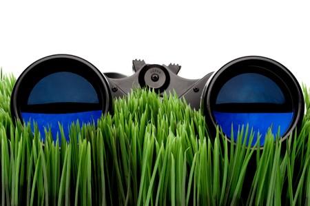 diopter: Horizontal cerca de binoculares en la hierba verde con un fondo blanco Foto de archivo
