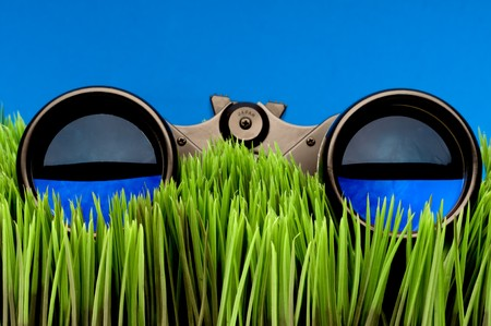 Horizontal close-up of binoculars on green grass with a blue background