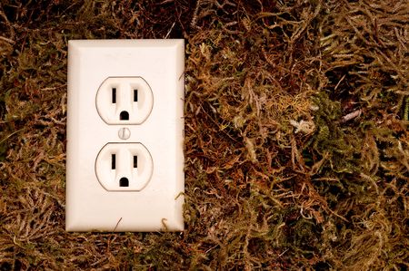 conductivity: an horizontal image of an American power outlet on a moss background and space for copy Stock Photo