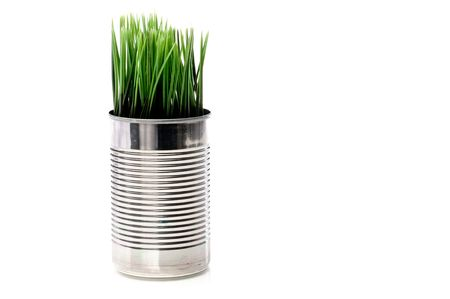 Horizontal image of green grass growing from a recyled can Stock Photo