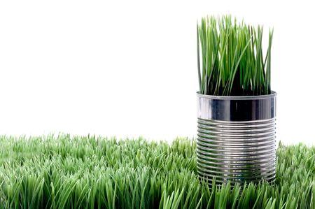 Verde hierba crece desde un aluminim de recyled puede sobre c�sped Foto de archivo