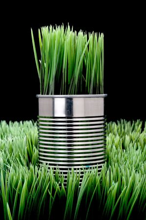 Green grass growing from a recycled aluminum can on grass