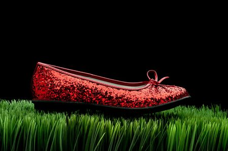 Sequined red slipper on green grass on black