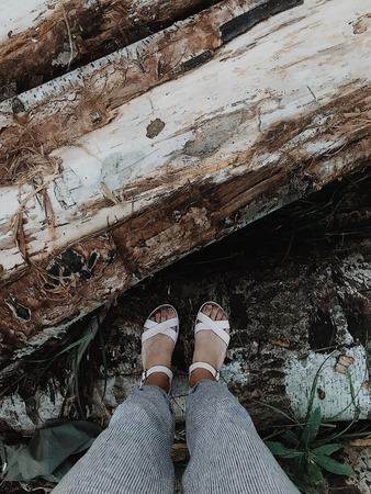 Female feet in sandals stand on a tree in the forest. Forest nature. Stroll. Vertical shot Stok Fotoğraf