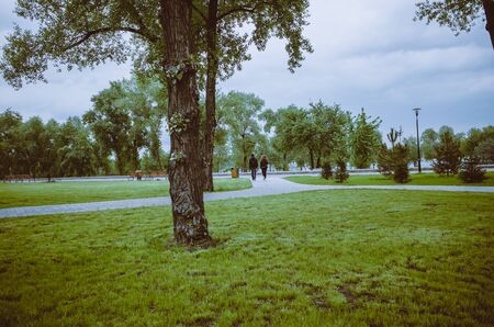 Panorama of green city park. A young couple walks in the background