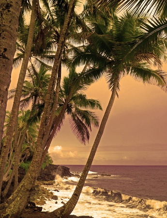 big island: Puna wild and scenic shoreline on the Big Island of Hawaii