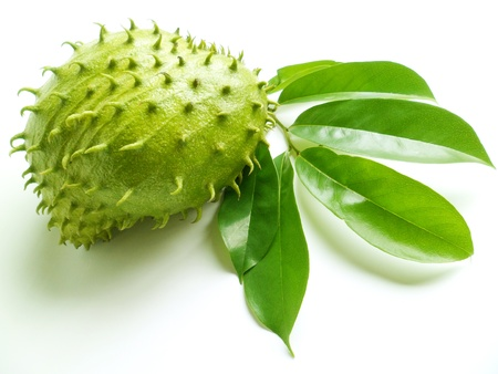 Tropical soursop fruits with green leaves