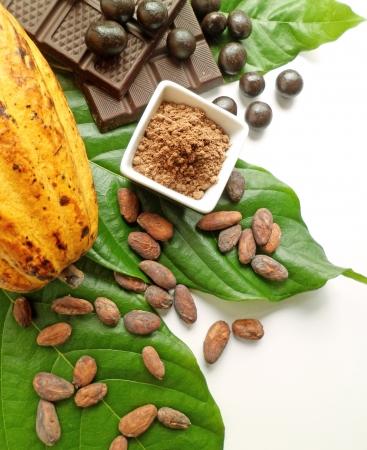 cacao: Fruto de cacao con frijoles, polvo, chocolates y dispuestos en la parte superior de las hojas verdes de cacao Foto de archivo