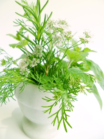 A bouquet of fresh herbs arranged in a morta & pestle bowl with white background