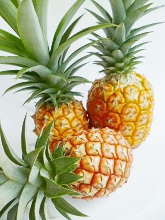 enzyme: A group of three pineapples from Hawaii with green tops arranged on white background
