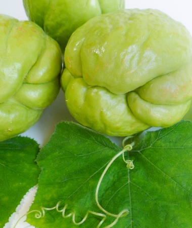 chayote: A group of chayote squashes with green leaves on white background Stock Photo