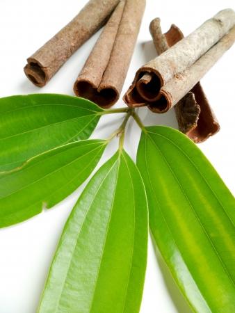 cinnamomum: Cinnamon sticks with green cinnamon leaves on white background Stock Photo