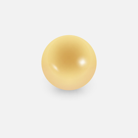 Gold pearl on the white background Vector