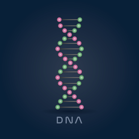 Colorful pink and green abstract DNA strand symbol isolated on dark blue background.