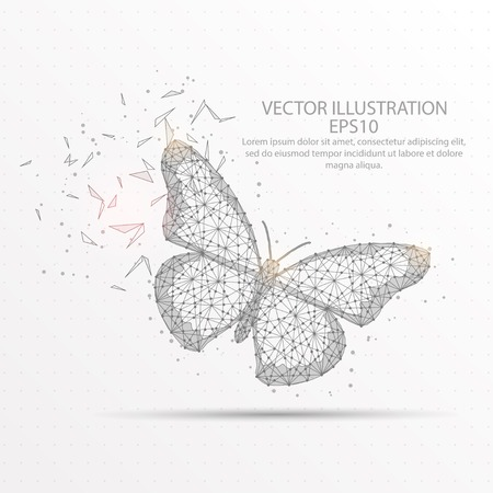 Butterfly abstract mesh line and composition digitally drawn starry sky or space in the form of broken a part triangle shape and scattered dots low poly wire frame.