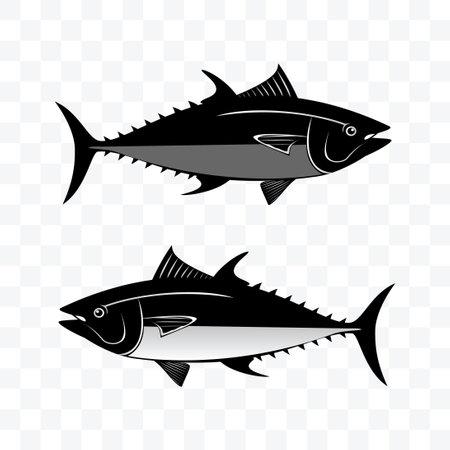 Monochrome tuna fish set vector illustration on transparent background.