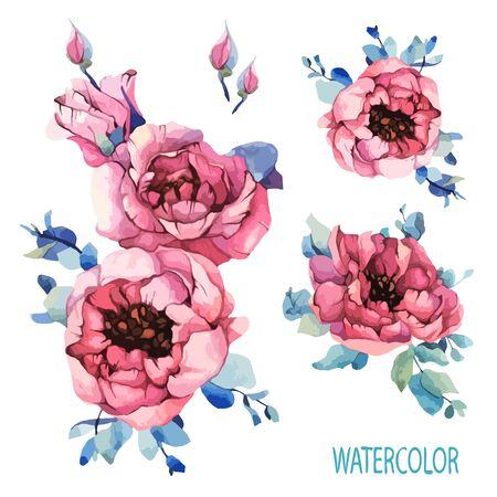 Watercolor set garden roses, pink peony, navy blue leaves, spring, summer elements. Floral, flowers decorations greeting, invitation, holiday. Vector stock design illustration on isolated background. Ilustração