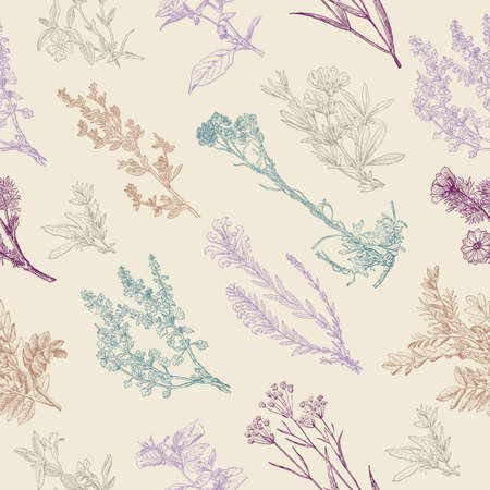 Herbal seamless pattern. Medical forest vintage plants. Can be used like a texture and fabric print. Herbs design for cosmetics, store, beauty salon, natural and organic products. Vector illustration.