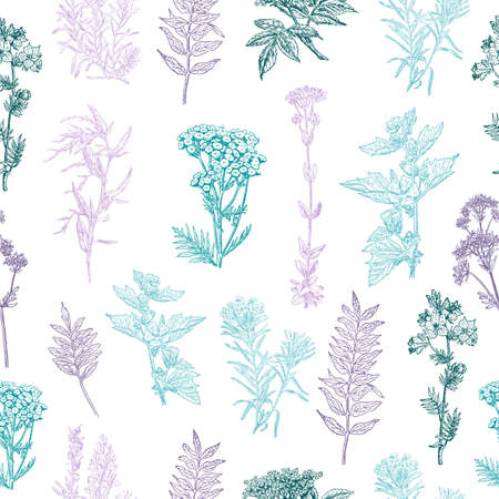 Herbal seamless pattern. Background design for cosmetics, store, beauty salon, natural and organic products. Medical forest plants. Can be used like a texture and fabric print. Vector illustration. Çizim