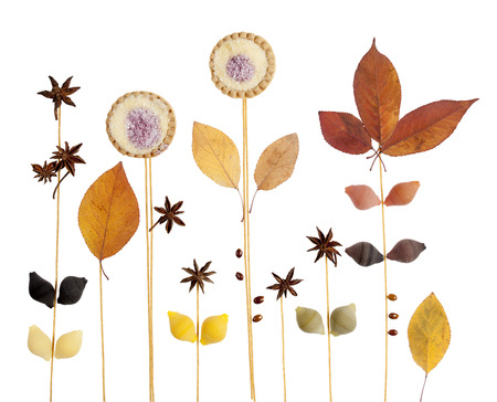 spelled: Abstract decorative background with star anise, pasta, cookies and autumn leaves isolated on white