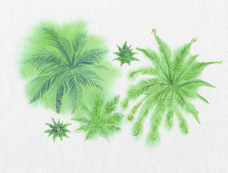 fond: Green leaves watercolors painted Stock Photo