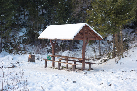 Picnic place for tourists in winter forest photo