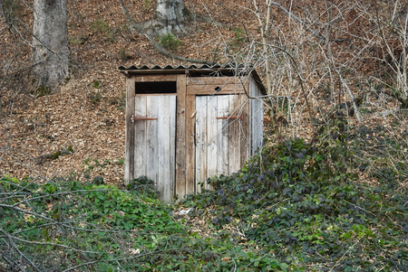 latrine: Old wooden outhouse in the forest Stock Photo