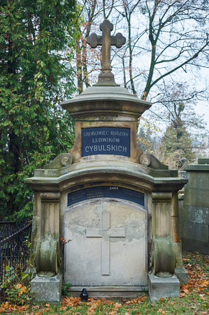 tombstones: LVIV, UKRAINE - NOVEMBER 10, 2016: Old tombstones in catholic cemetrey. Lviv, Ukraine.