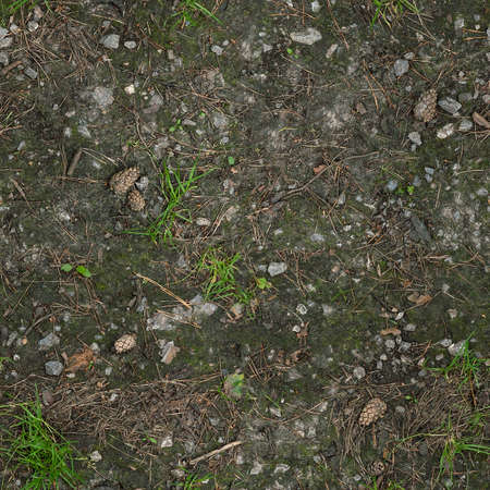 Seamless forest gravel ground texture
